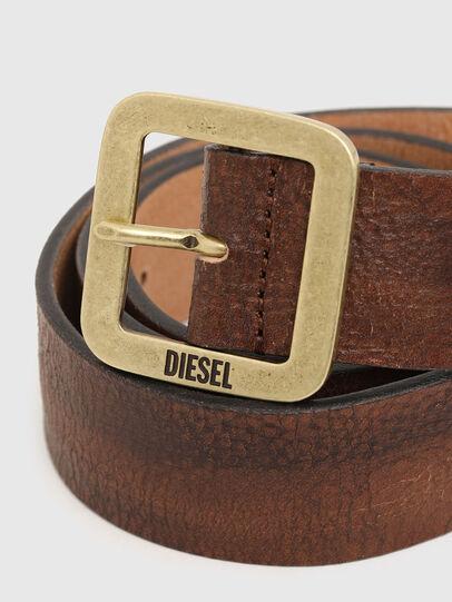 Diesel - B-ROCCO, Marrón - Cinturones - Image 2