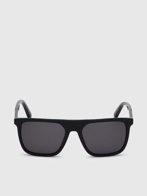 DL0299, Negro/Gris - Gafas de sol
