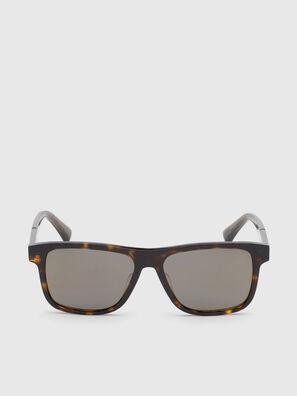 DL0279, Marrón - Gafas de sol