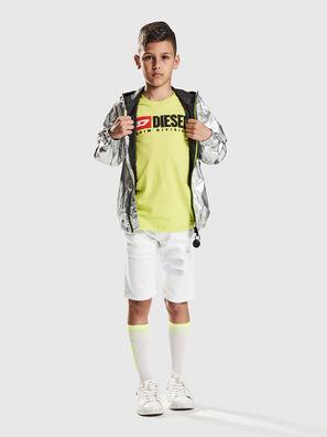 KROOLEY-NE-J SH-T JJ, Blanco - Shorts