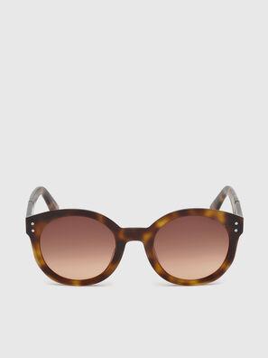 DL0252, Marrón - Gafas de sol